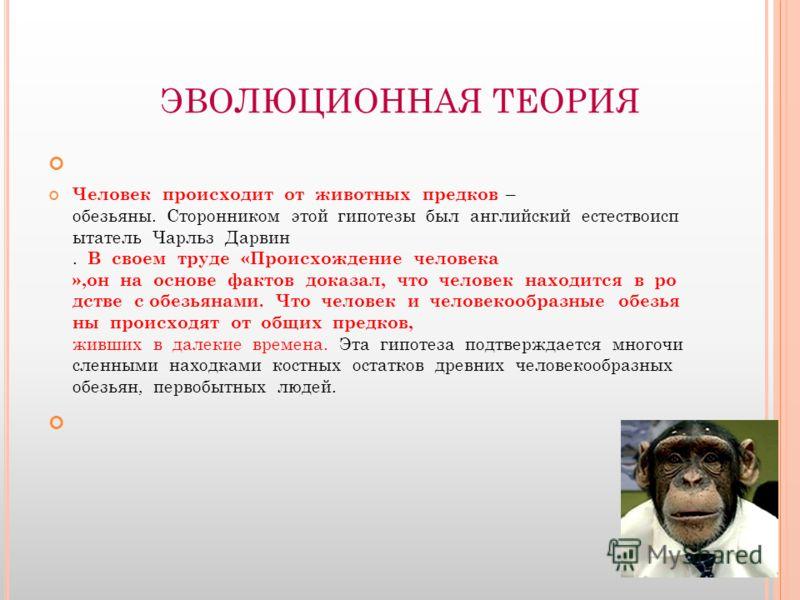 ЭВОЛЮЦИОННАЯ ТЕОРИЯ Человек происходит от животных предков – обезьяны. Сторонником этой гипотезы был английский естествоисп ытатель Чарльз Дарвин. В своем труде «Происхождение человека »,он на основе фактов доказал, что человек находится в ро дстве с