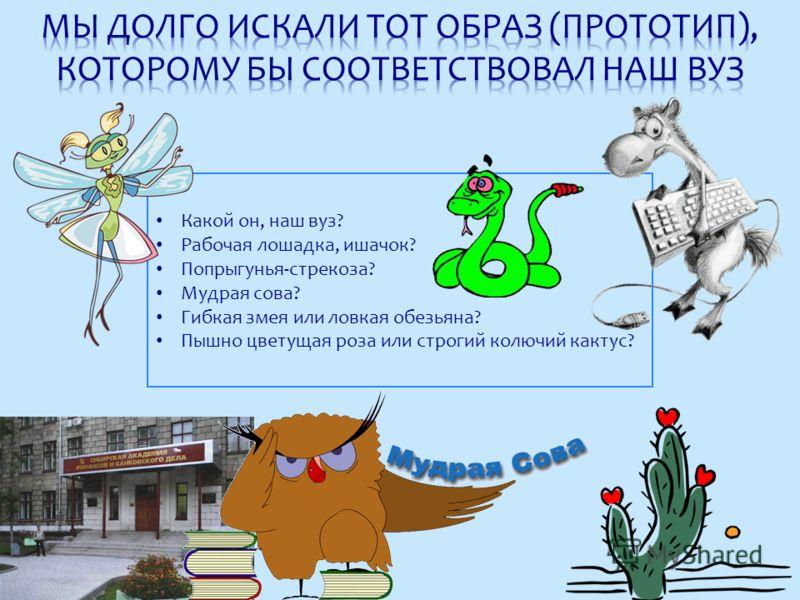 Какой он, наш вуз? Рабочая лошадка, ишачок? Попрыгунья-стрекоза? Мудрая сова? Гибкая змея или ловкая обезьяна? Пышно цветущая роза или строгий колючий кактус?