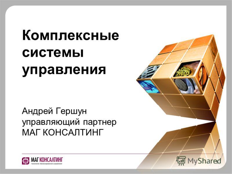 1 Комплексные системы управления Андрей Гершун управляющий партнер МАГ КОНСАЛТИНГ