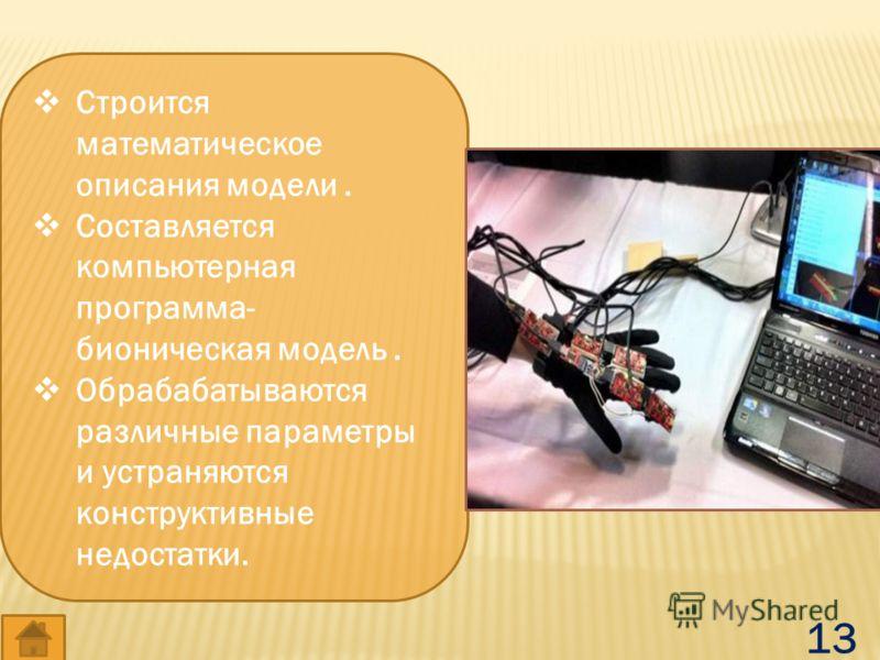 Строится математическое описания модели. Составляется компьютерная программа- бионическая модель. Обрабабатываются различные параметры и устраняются конструктивные недостатки. 13
