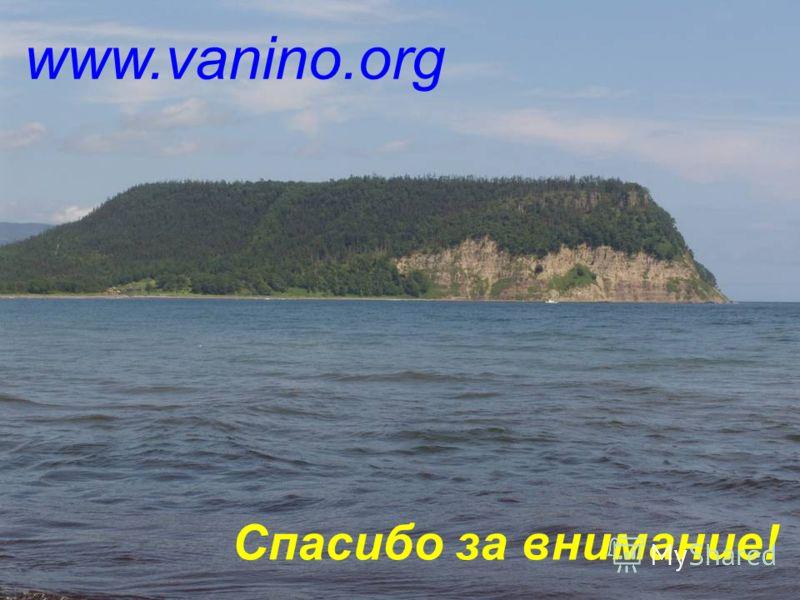 13 www.vanino.org Спасибо за внимание!