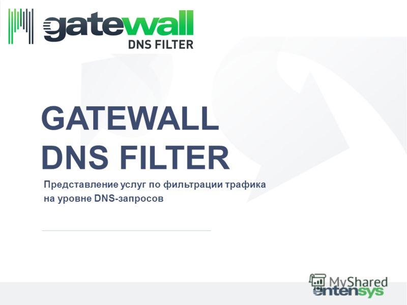 GATEWALL DNS FILTER Представление услуг по фильтрации трафика на уровне DNS-запросов