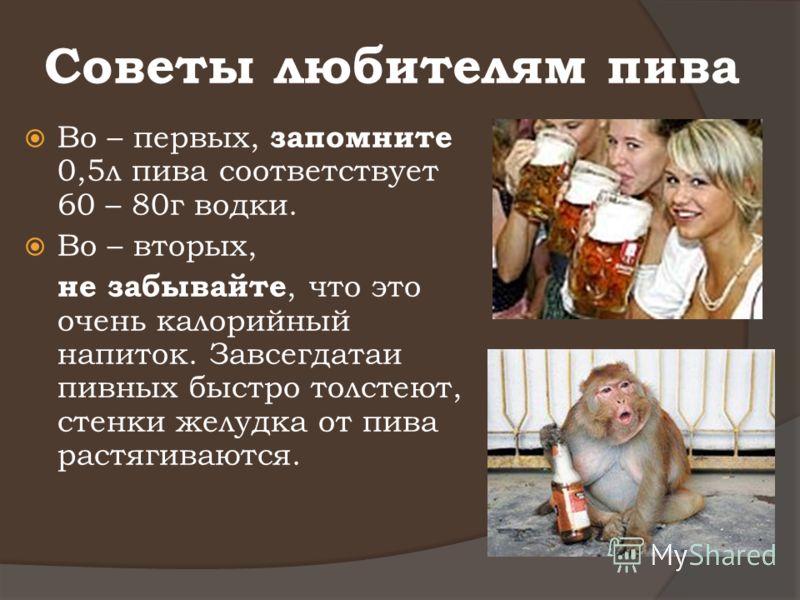 Советы любителям пива Во – первых, запомните 0,5л пива соответствует 60 – 80г водки. Во – вторых, не забывайте, что это очень калорийный напиток. Завсегдатаи пивных быстро толстеют, стенки желудка от пива растягиваются.