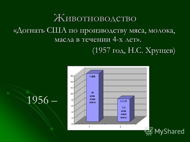 Животноводство «Догнать США по производству мяса, молока, масла в течении 4-х лет». (1957 год, Н.С. Хрущев) 1956 –