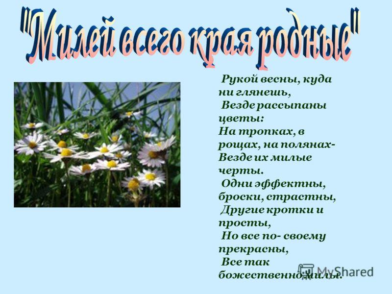 Рукой весны, куда ни глянешь, Везде рассыпаны цветы: На тропках, в рощах, на полянах- Везде их милые черты. Одни эффектны, броски, страстны, Другие кротки и просты, Но все по- своему прекрасны, Все так божественно милы.