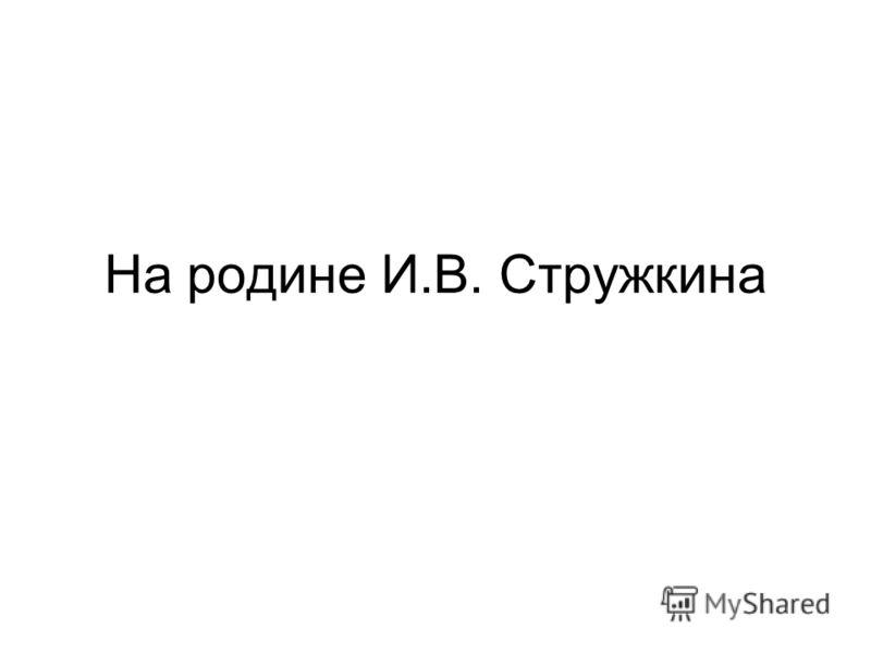 На родине И.В. Стружкина