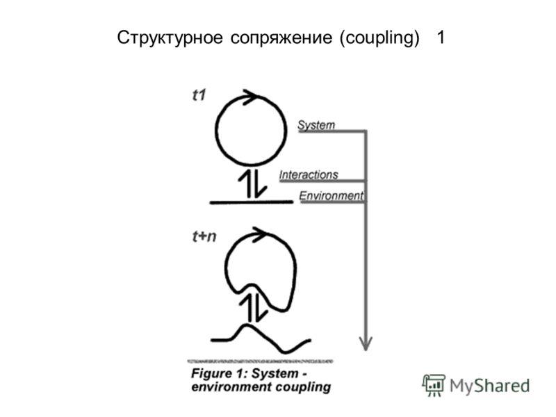 Структурное сопряжение (coupling) 1