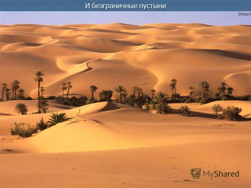 И безграничные пустыни