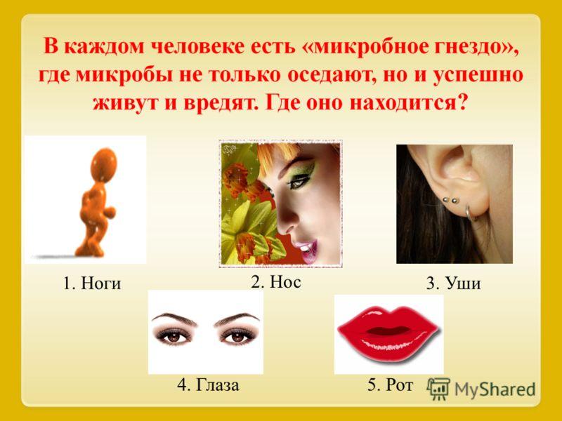 4. 1. Ноги 2. Нос 3. Уши 4. Глаза5. Рот
