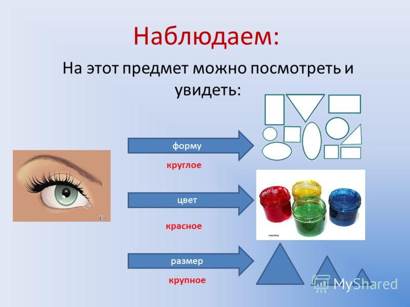 Наблюдаем: На этот предмет можно посмотреть и увидеть: форму цвет размер круглое красное крупное