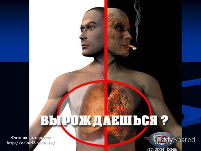 Все решать только тебе Фото из Интернета: http://nekuri2.narod.ru/