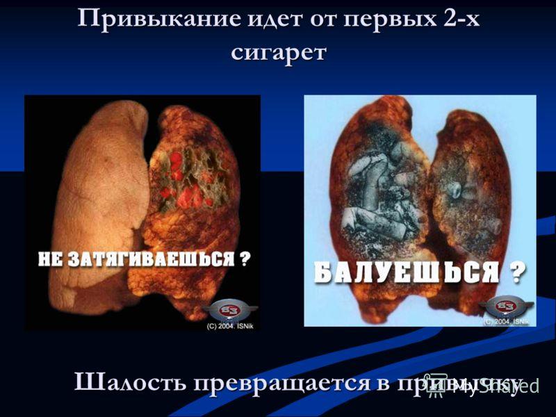 Шалость превращается в привычку Привыкание идет от первых 2-х сигарет
