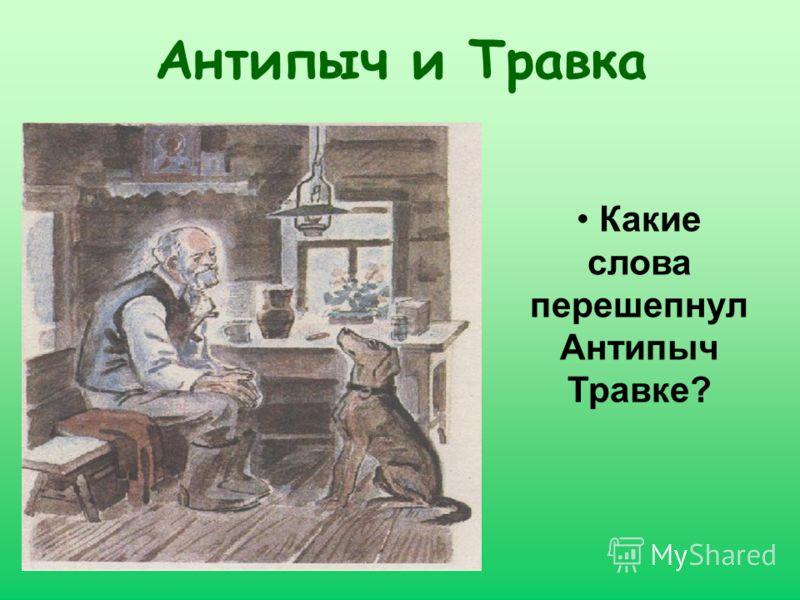 Антипыч и Травка Какие слова перешепнул Антипыч Травке?
