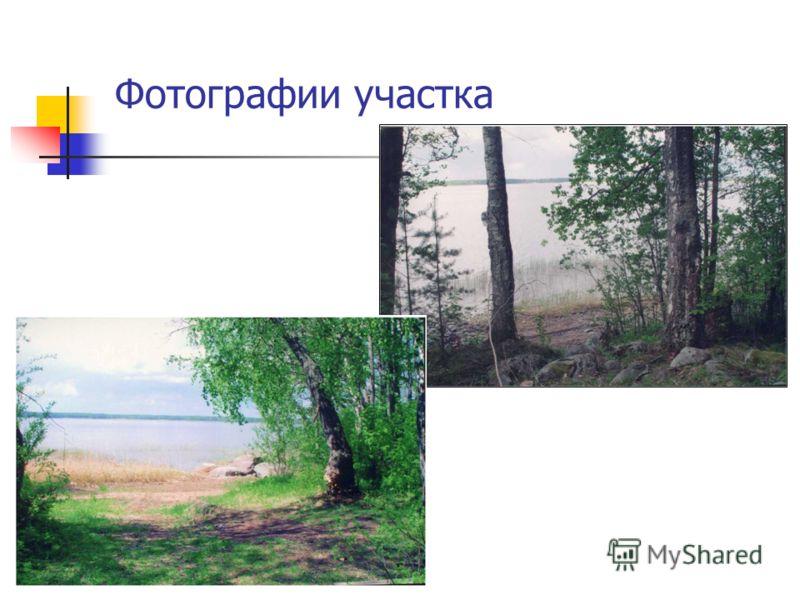 Фотографии участка