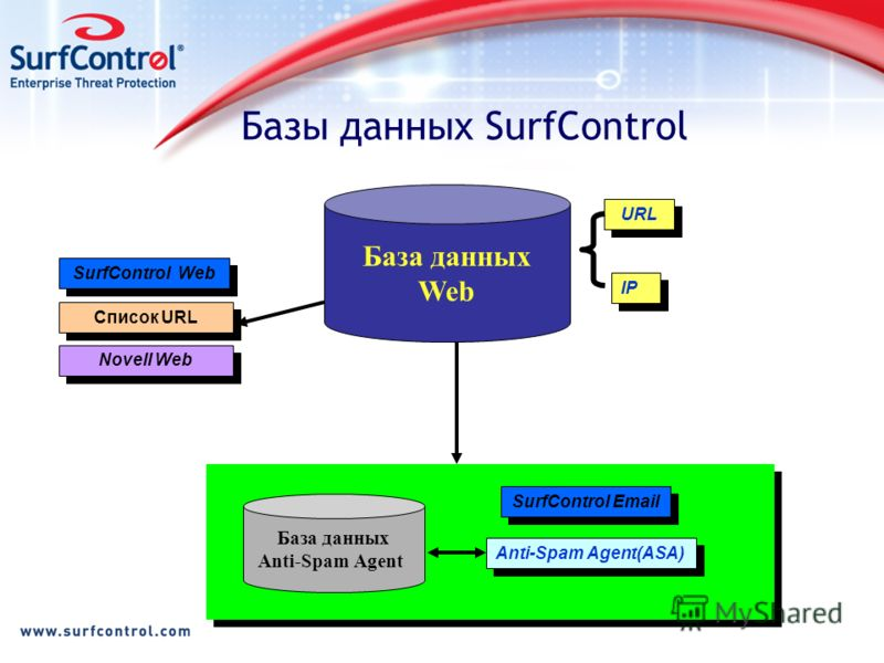 Базы данных SurfControl Novell Web SurfControl Web IP URL Anti-Spam Agent(ASA) База данных Anti-Spam Agent SurfControl Email База данных Web Список URL