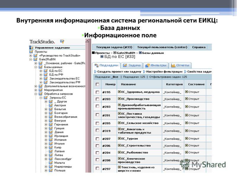 Внутренняя информационная система региональной сети ЕИКЦ: База данных Информационное поле