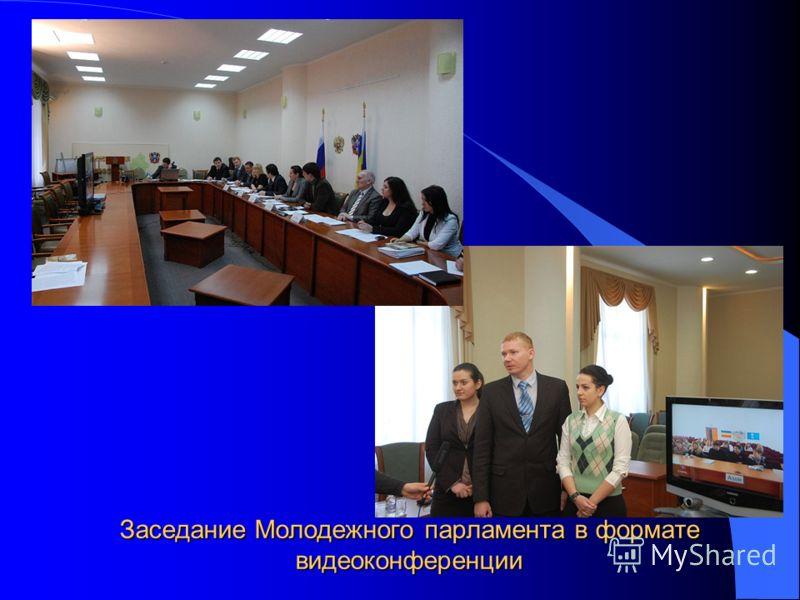 Заседание Молодежного парламента в формате видеоконференции