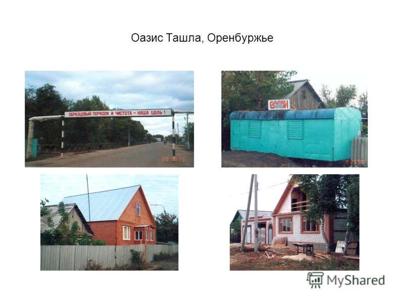 Оазис Ташла, Оренбуржье