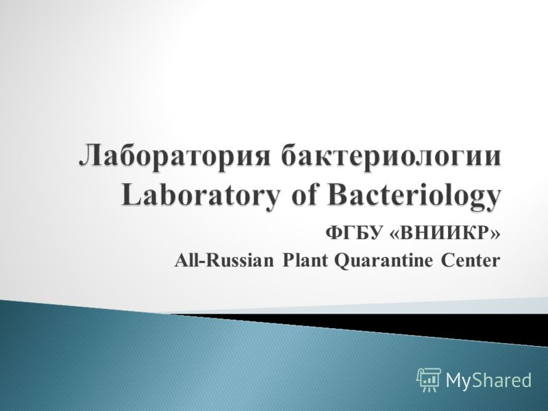ФГБУ «ВНИИКР» All-Russian Plant Quarantine Center