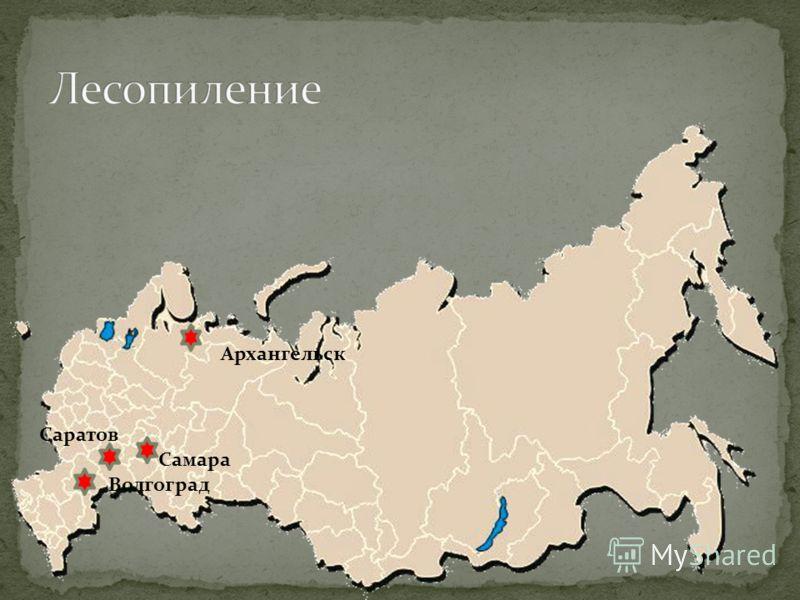 Архангельск Самара Саратов Волгоград