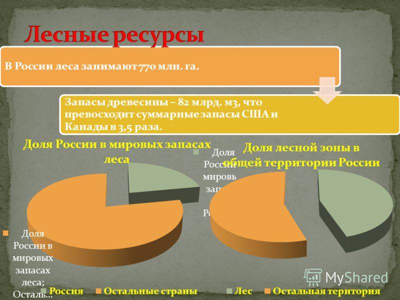 В России леса занимают 770 млн. га. Запасы древесины – 82 млрд. м3, что превосходит суммарные запасы США и Канады в 3,5 раза.