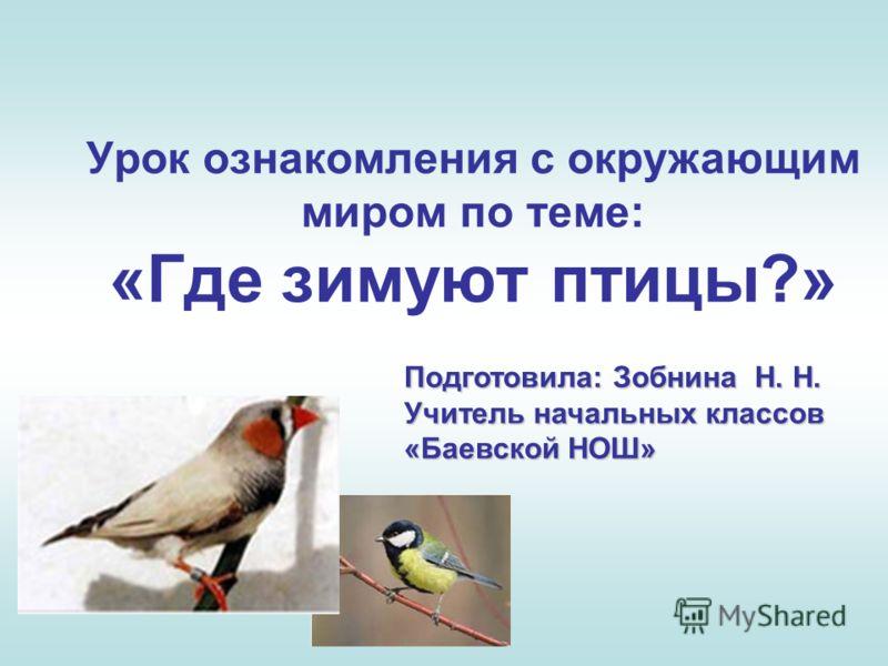 Урок ознакомления с окружающим миром по теме: «Где зимуют птицы?» Подготовила: Зобнина Н. Н. Учитель начальных классов «Баевской НОШ»
