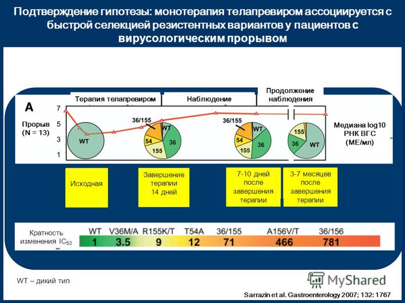 Подтверждение гипотезы: монотерапия телапревиром ассоциируется с быстрой селекцией резистентных вариантов у пациентов с вирусологическим прорывом Baseline EOD 14 days 7 – 10 days post-dosing 3 – 7 months post-dosing Sarrazin et al. Gastroenterology 2