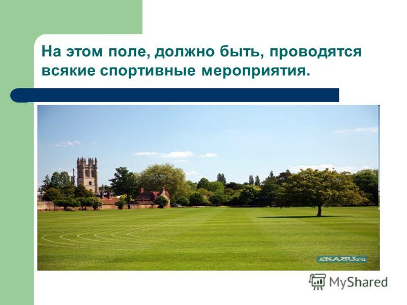 На этом поле, должно быть, проводятся всякие спортивные мероприятия.