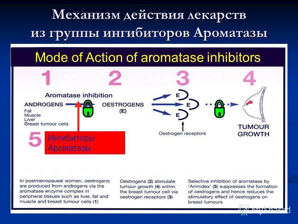 Mode of Action of aromatase inhibitors Ингибиторы Ароматазы Механизм действия лекарств из группы ингибиторов Ароматазы