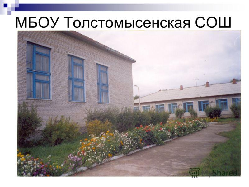 МБОУ Толстомысенская СОШ 7