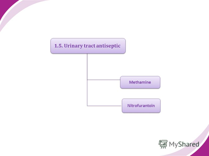 1.5. Urinary tract antiseptic Methamine Nitrofurantoin