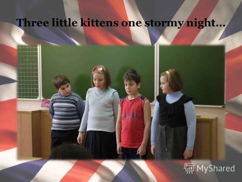 Three little kittens one stormy night…