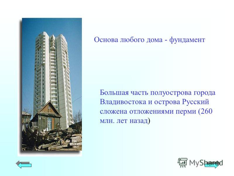 Большая часть полуострова города Владивостока и острова Русский сложена отложениями перми (260 млн. лет назад) Основа любого дома - фундамент