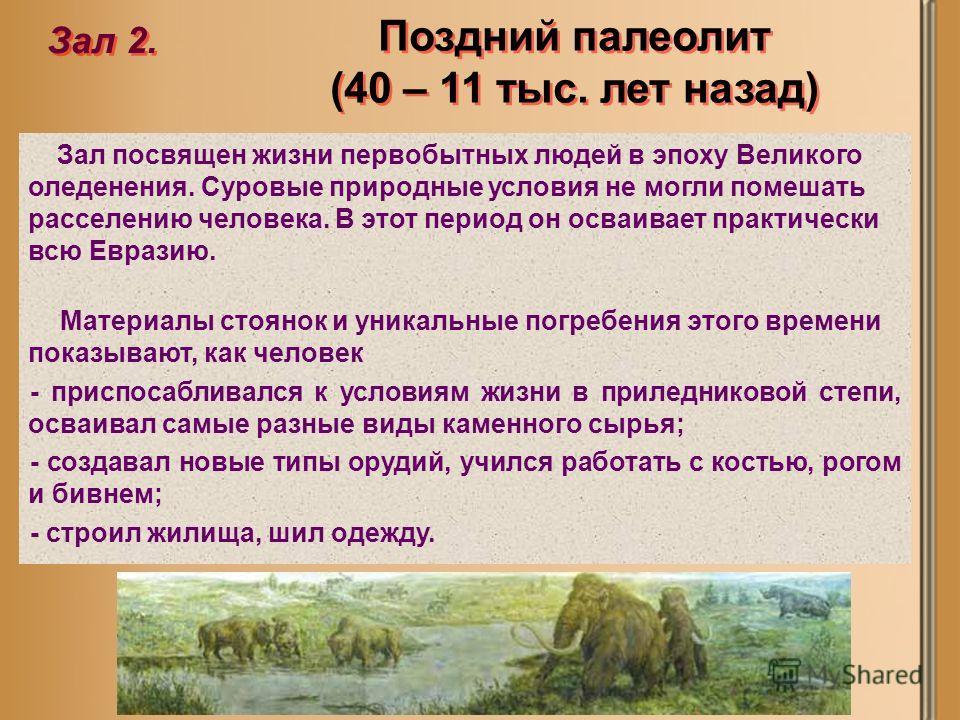 Поздний палеолит (40 – 11 тыс. лет назад) Зал 2. Зал посвящен жизни первобытных людей в эпоху Великого оледенения. Суровые природные условия не могли помешать расселению человека. В этот период он осваивает практически всю Евразию. Материалы стоянок