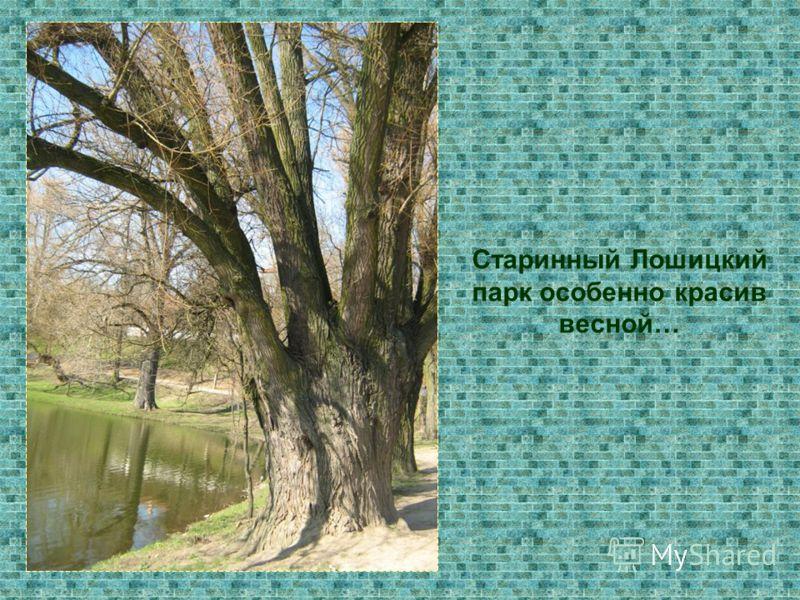 Старинный Лошицкий парк особенно красив весной…