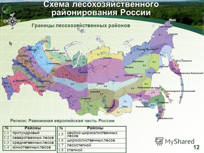 12 Схема лесохозяйственного районирования России Границы лесохозяйственных районов Районы 1.5 хвойно-широколиственных лесов 1.6 широколиственных лесов 1.7 лесостепной 1.8 степной Регион: Равнинная европейская часть России Районы 1.1 притундровый 1.2