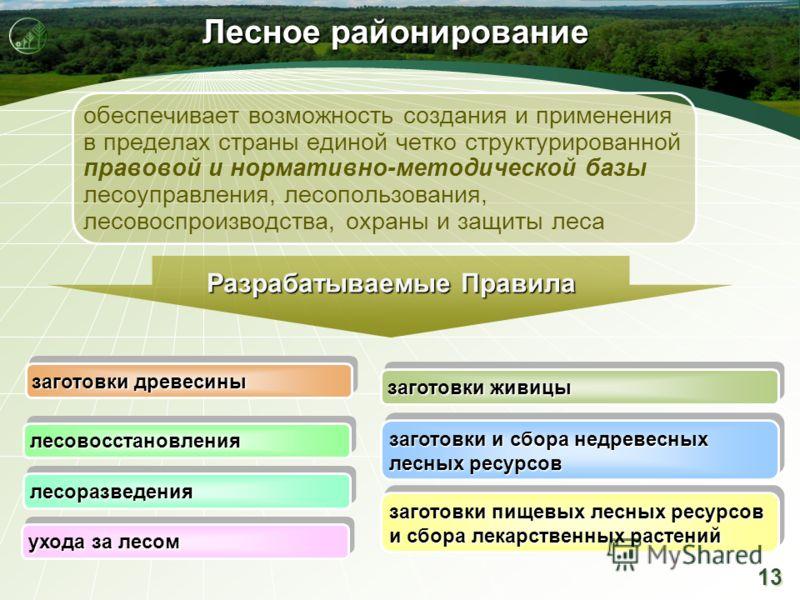 13 Лесное районирование заготовки древесины заготовки живицы заготовки и сбора недревесных лесных ресурсов заготовки пищевых лесных ресурсов и сбора лекарственных растений лесовосстановлениялесовосстановления лесоразведениялесоразведения ухода за лес