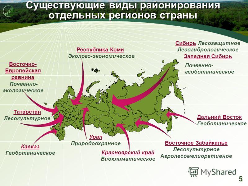 5 5 Существующие виды районирования отдельных регионов страны Сибирь Лесозащитное Лесогидрологическое Западная Сибирь Восточно- Европейская равнина Почвенно- экологическое Республика Коми Эколого-экономическое Татарстан Лесокультурное Восточное Забай