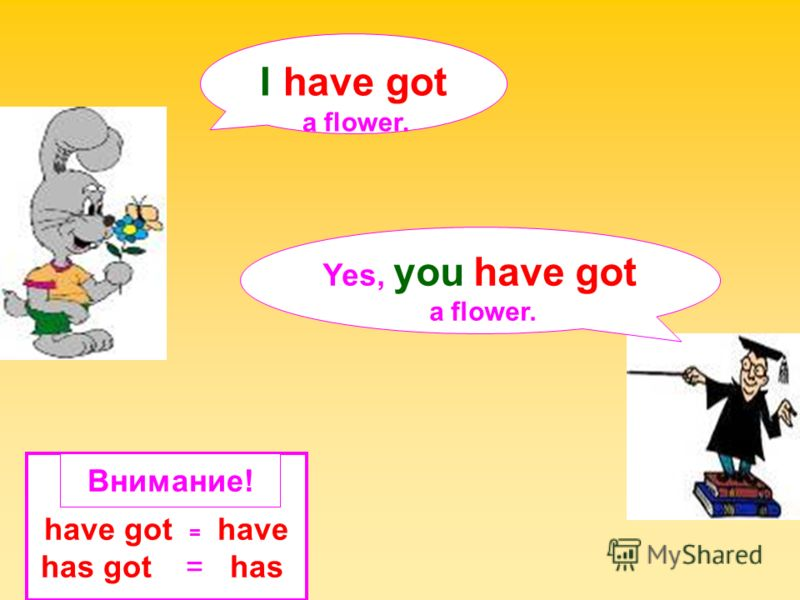 Yes, you have got a flower. I have got a flower. have got = have has got = has Внимание!