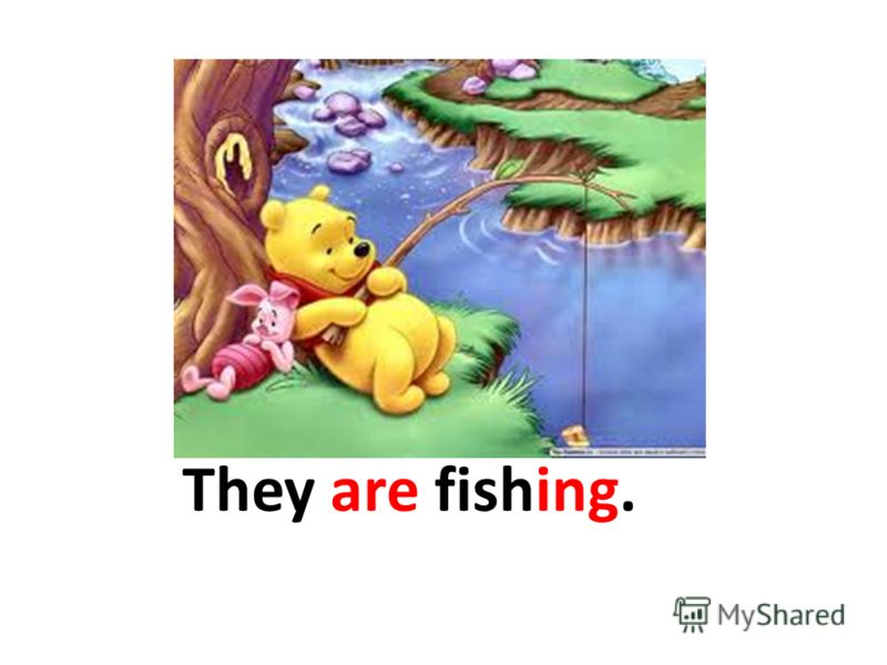 They are fishing.