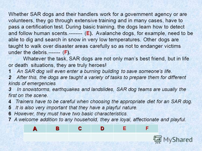 Whether SAR dogs and their handlers work for a government agency or are volunteers, they go through extensive training and in many cases, have to pass a certification test. During basic training, the dogs learn how to detect and follow human scents.-