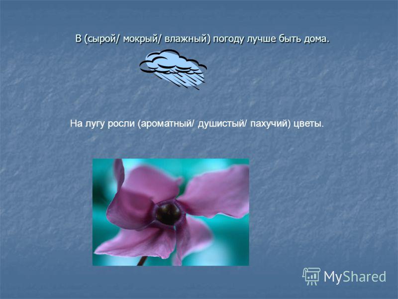 В (сырой/ мокрый/ влажный) погоду лучше быть дома. В (сырой/ мокрый/ влажный) погоду лучше быть дома. На лугу росли (ароматный/ душистый/ пахучий) цветы.