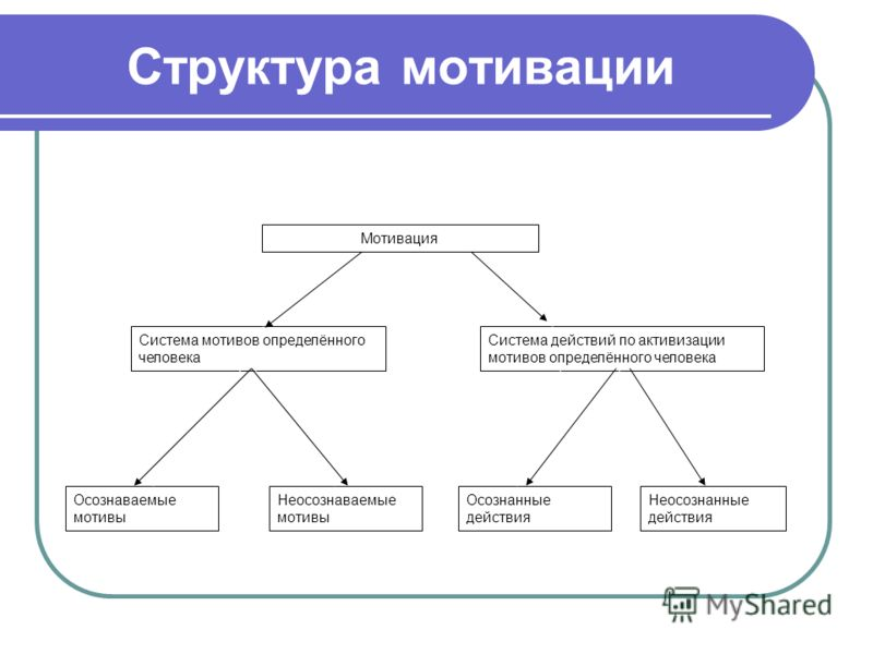 Структура мотивации Система мотивов определённого человека Мотивация Система действий по активизации мотивов определённого человека Осознаваемые мотивы Неосознаваемые мотивы Осознанные действия Неосознанные действия