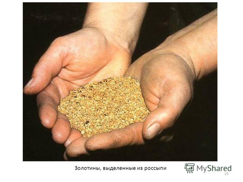 Золотины, выделенные из россыпи 25