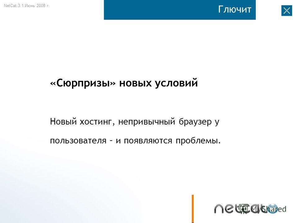 NetCat 3.1. Июнь 2008 г. Глючит «Сюрпризы» новых условий Новый хостинг, непривычный браузер у пользователя – и появляются проблемы.