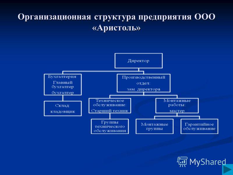 Организационная структура предприятия ООО «Аристоль»