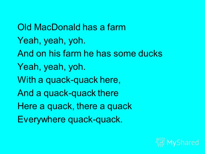 Old MacDonald has a farm Yeah, yeah, yoh. And on his farm he has some ducks Yeah, yeah, yoh. With a quack-quack here, And a quack-quack there Here a quack, there a quack Everywhere quack-quack.