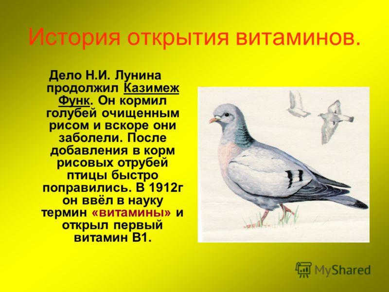 История открытия витаминов. Дело Н.И. Лунина продолжил Казимеж Функ. Он кормил голубей очищенным рисом и вскоре они заболели. После добавления в корм рисовых отрубей птицы быстро поправились. В 1912г он ввёл в науку термин «витамины» и открыл первый
