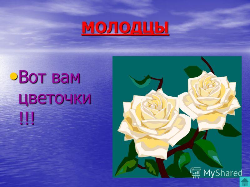 МОЛОДЦЫ Вот вам цветочки !!! Вот вам цветочки !!!