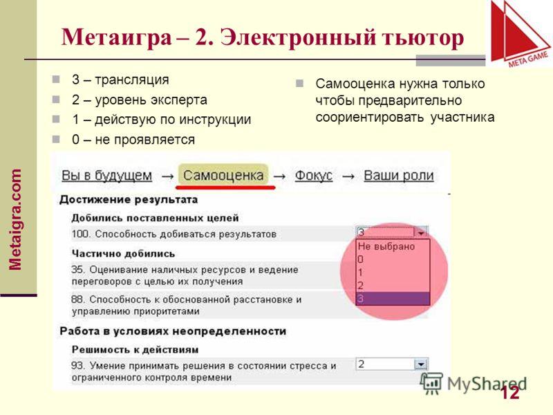 Metaigra.com 12 Метаигра – 2. Электронный тьютор 3 – трансляция 2 – уровень эксперта 1 – действую по инструкции 0 – не проявляется Самооценка нужна только чтобы предварительно сориентировать участника